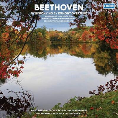 Alfred Scholz 베토벤: 교향곡 5번, 에그몬트 서곡 (Beethoven: Symphony Op.67, Egmont Overture Op.84) [LP]