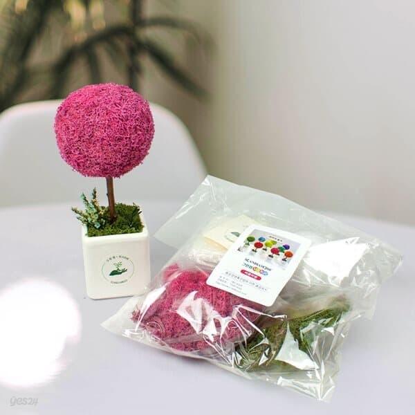 [스칸디아모스 토피어리 반제품 키트] 그린썸 모스트리 천연이끼 토피어리 화분 만들기 모스이끼
