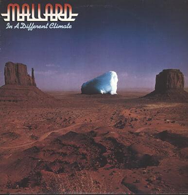 Mallard (말라드) - In A Different Climate [LP]