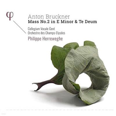 Philippe Herreweghe 브루크너: 미사곡 2번, 테 데움 (Bruckner: Mass No. 2 in E Minor, Te Deum WAB 45)