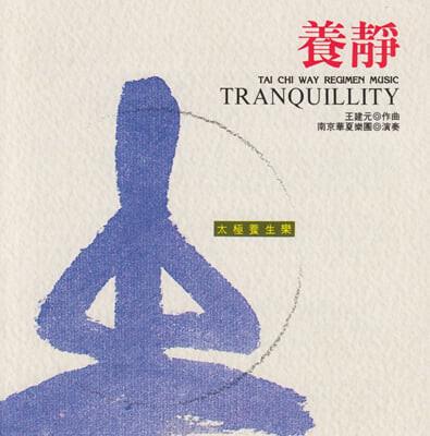 Nanjing Dynasty Orchestra 실용 건강음악 - 마음의 평온을 위한 음악 (Tai Chi Way Regimen Music - Tranquillity)