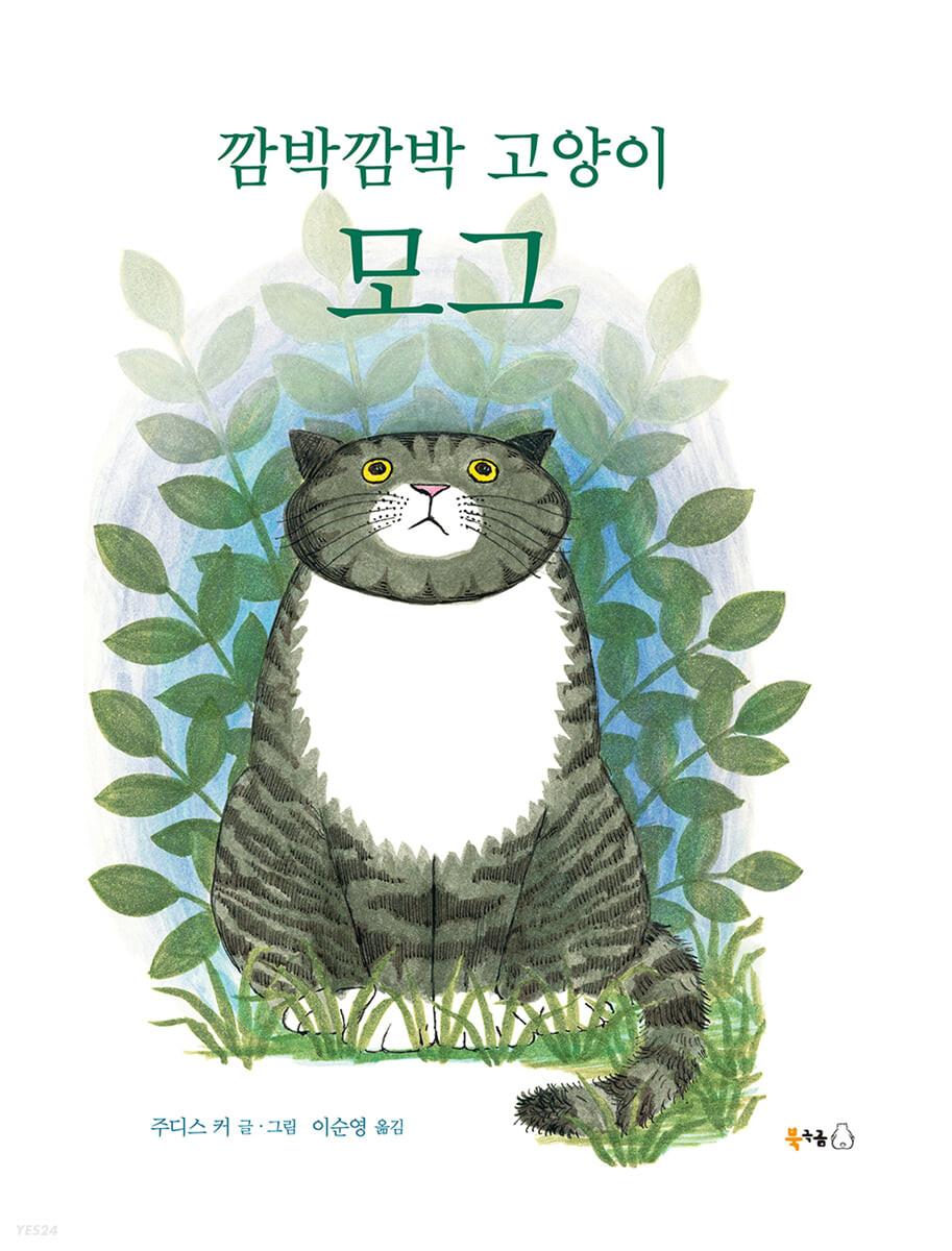 깜박깜박 고양이 모그