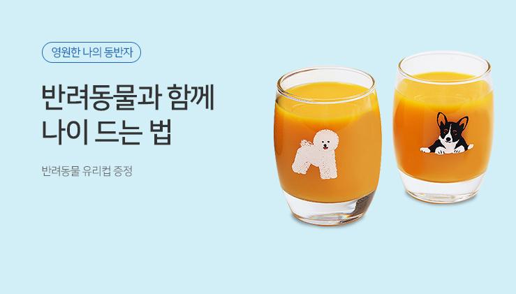 반려동물 유리컵
