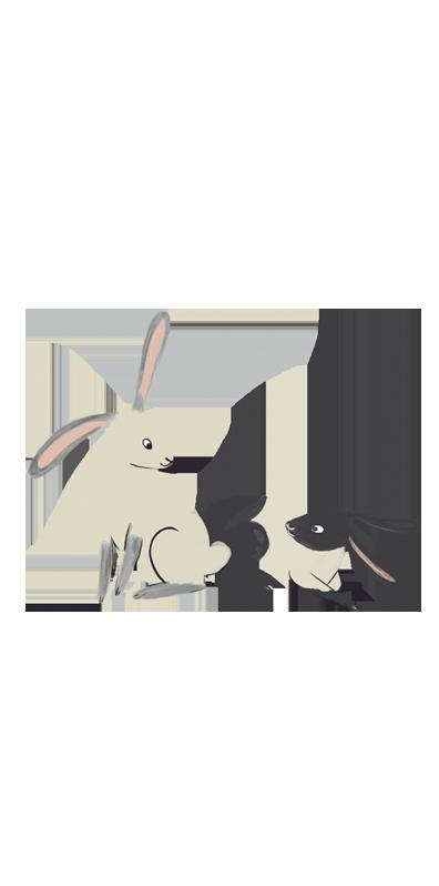 동물 이미지