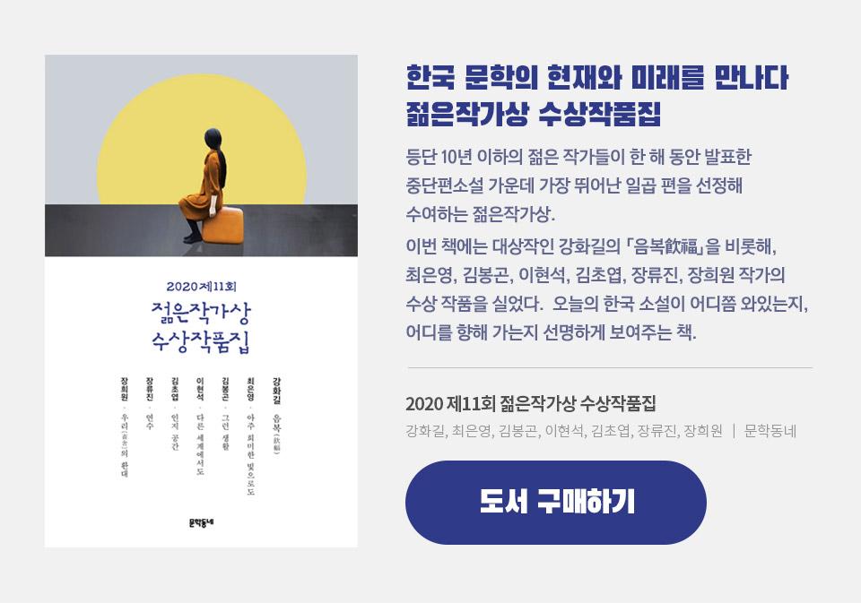 한국 문학의 현재와 미래를 만나다 젊은작가상 수상작품집