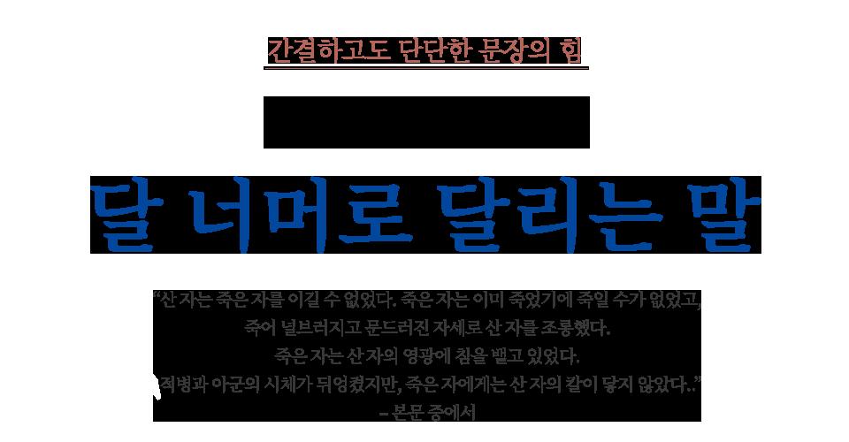 김훈 장편 소설 달 너머로 달리는 말