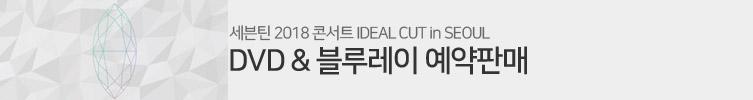 세븐틴 2018 콘서트 Ideal Cut