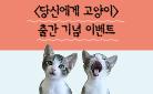『당신에게 고양이』 출간 이벤트