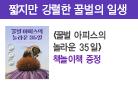 『꿀벌 아피스의 놀라운 35일』, 책놀이책 증정