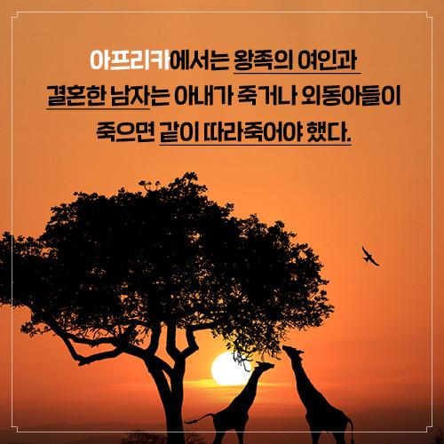 카드뉴스_경제학자의인문학서재_500px8.jpg