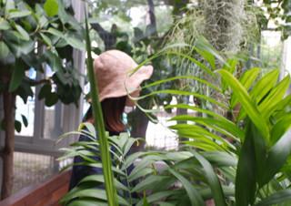 식물을 좋아하지만 잘 키우지 못하는 사람들에게 | YES24 채널예스