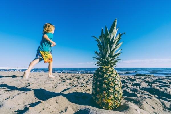 pineapple-supply-co-110191 - 복사본.jpg