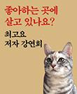 『좋아하는 곳에 살고 있나요?』 저자 강연회
