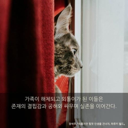 외롭지만 힘껏 인생을 건너자, 하루키 월드_이카드 (5).jpg