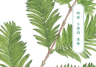[편집자의 기획] 도심 속 리틀 포레스트 - 『하루 5분의 초록』   YES24 채널예스