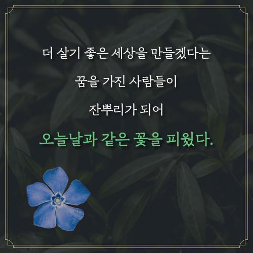예스_요한씨돌용현_500x500_14.jpg