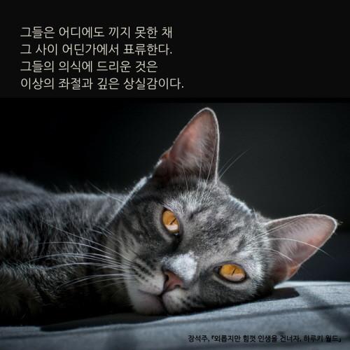 외롭지만 힘껏 인생을 건너자, 하루키 월드_이카드 (7).jpg