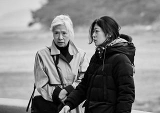 [손희정의 더 페이보릿] 올드 레이디의 이야기 ? 임선애 감독 | YES24 채널예스