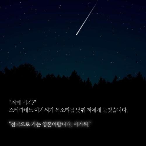 별들4.jpg