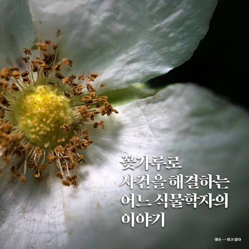 꽃은알고있다_카드뉴스01.jpg