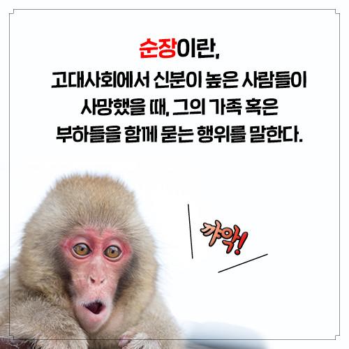 카드뉴스_경제학자의인문학서재_500px4.jpg