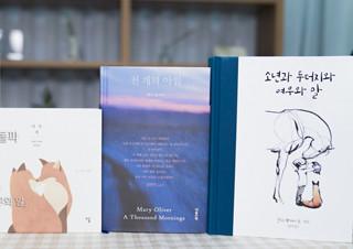[책읽아웃] 크리스마스에 선물하면 좋을 책 | YES24 채널예스