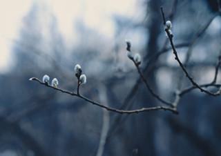 [예스24 소설/시 MD 박형욱 추천] 봄을 기다리는 겨울의 시 | YES24 채널예스