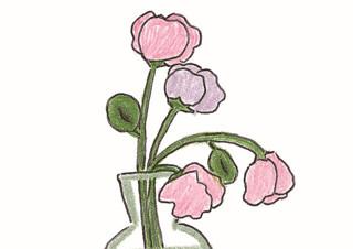 시들기에 더욱 아름다운 : 꽃 | YES24 채널예스