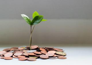 현직 은행원이 말하는 돈 버는 비법! | YES24 채널예스