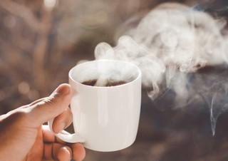 [책장 위 고양이] 언젠가, 커피 - 오은 | YES24 채널예스
