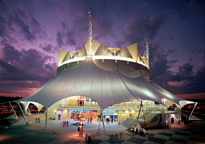 Cirque du Soleil_La Nouba- Theater at Night.jpg