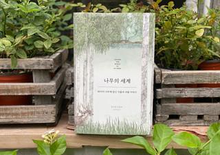 나무를 베어야만 만들지만, 누구보다 나무를 사랑하는 책 | YES24 채널예스