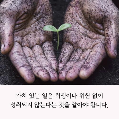 아들과나눠야할인생의대화_카드뉴스_0221.jpg