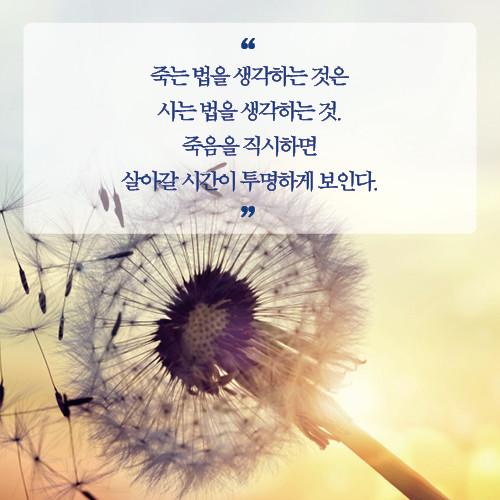 예스24_힘있게살고_카드뉴스17.jpg