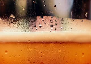 책으로 술도 끊을 수 있나요? | YES24 채널예스