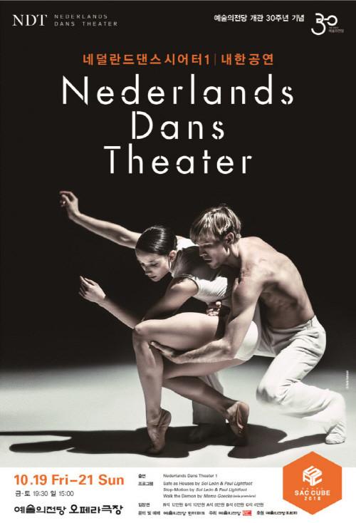 네덜란드댄스시어터.jpg