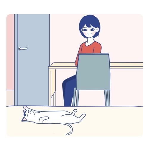 053_고양이.jpg