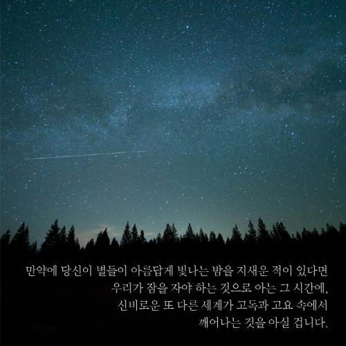 별들6.jpg