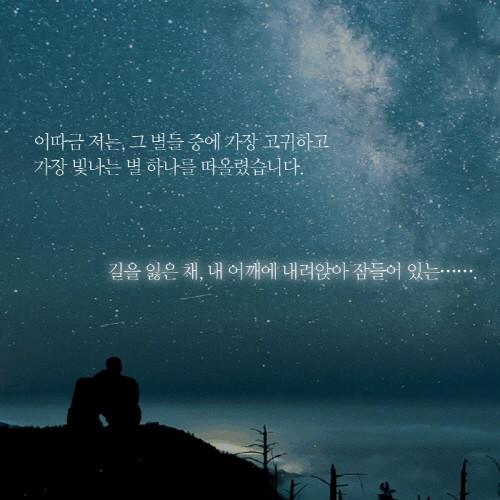 별들7.jpg