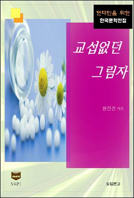 교섭없던 그림자 (한국문학전집 384)