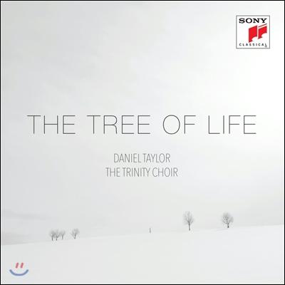 Daniel Taylor / The Trinity Choir 트리 오브 라이프 - 크리스마스 종교 음악집 (The Tree of Life) 다니엘 테일러, 트리니티 합창단