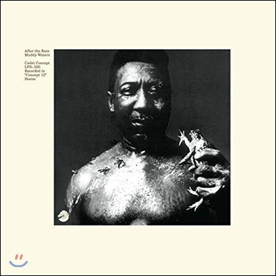 Muddy Waters (머디 워터스) - After The Rain [LP]