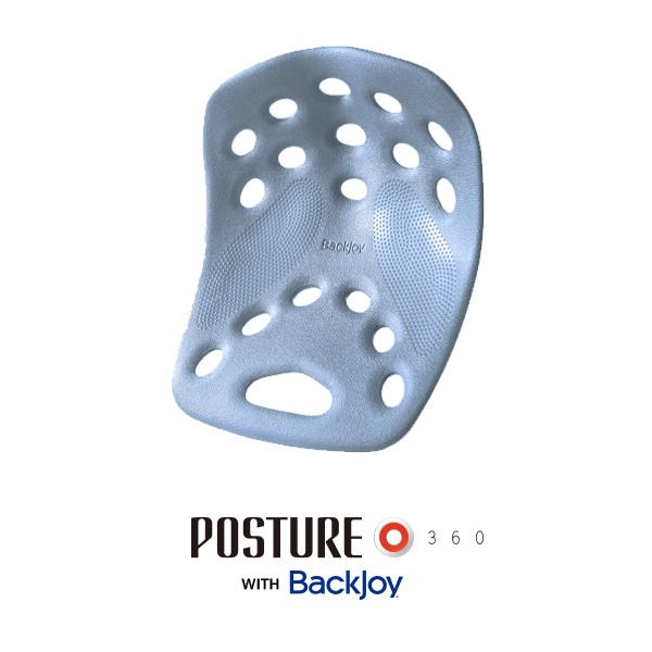 [포스처360] 포스처 스탠다드 허리지지대/자세교정 방석