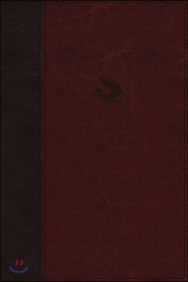 NKJV, Spirit-Filled Life Bible, Third Edition, Imitation Leather, Burgundy, Indexed, Red Letter Edition, Comfort Print: Kingdom Equipping Through the