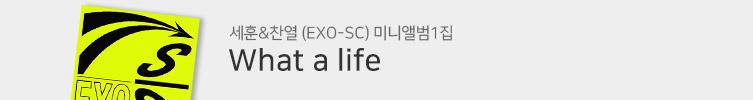 세훈&찬열 (EXO-SC) 미니앨범 1집 : What a life
