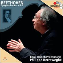 Philippe Herreweghe 베토벤: 교향곡 4,7번 (Beethoven : Symphony No.4 & 7) 필립 헤레베헤