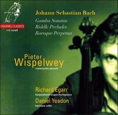 Pieter Wispelwey 바흐 : 비올라 다 감바 소나타 (Bach : Gamba Sonatas) 피터 비스펠베이