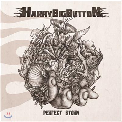 해리빅버튼 (HarryBigButton) - Perfect Storm