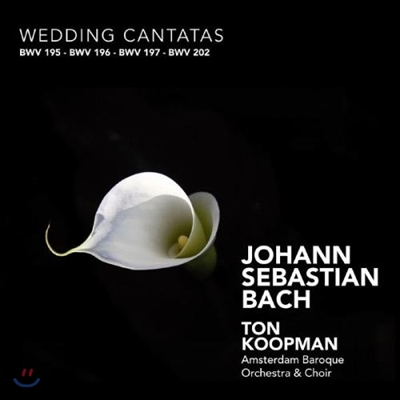 Ton Koopman 바흐: 승천절 칸타타 (Bach: Ascension Cantatas BWV11, 43, 128, 37)