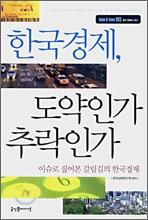 한국경제, 도약인가 추락인가